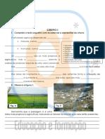 Teste Diagnóstico - A Agricultura, A Pecuária e a Pesca