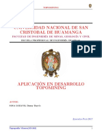 Manual de Usuario-ToPOMINING