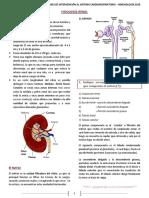 9. Fisiología renal.pdf
