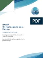 NAICM Informe 2018