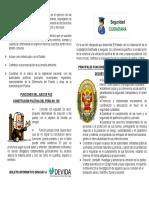 BIPTICO SEGURIDAD CIUDADANA.pdf