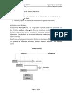 1495405102.Guia n 2 - Nomenclatura de Hidrocarburos (1)