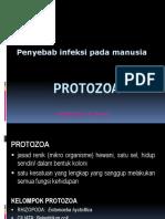 Protozoa OKE