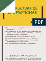 Estructura de Las Proteinas Trabajo