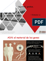N 12. Ingenieria Genetica-PDF