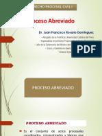 8. Proceso Abreviado - Dr. Juan Rosario