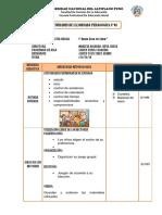 ESQUEMA DE LA ACTIVIDAD 2018 - II eee.docx
