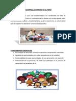 DESARROLLO HUMANO EN EL PERÚ.docx