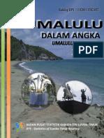Kecamatan Umalulu Dalam Angka 2017