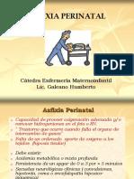 2.- Farmacocinética y Farmacodinamia