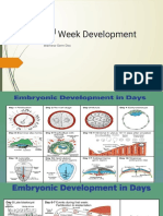 26839_2nd Week Development (2 Oct  2018-08.00)