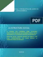 La Estructura de La Organización Social[5302]