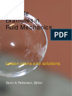 Examples in Fluid Mechanics