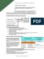 [IMUNO] Imunologia Resposta Inata e Adaptativa - RESUMO