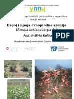 UPPCPrezentacijaAronija.pdf