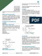 MT GOVT.pdf