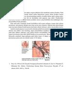 Patofisiologi Bronkhitis.docx