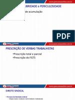 Aula 15 - Direitos Sociais III.pdf
