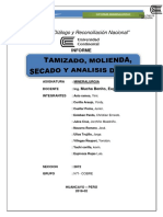 INFORME DE MINERALURGIA MODIFICAR.docx