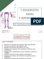 1-esqueleto-axial-y-apendicular (1).ppt