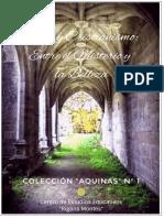 Arte y Cristianismo. Entre El Misterio y La Belleza. Colección Aquinas Nº 1
