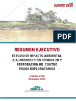 RESUMEN EJECUTIVO LOTE 130  FINAL 14-12-12.pdf