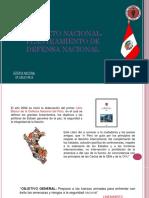PlanteamientoDeDefensa.pptx