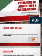 Principios de Algoritmos y Programación