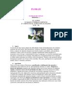 anexo de florais de minas.pdf
