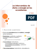 Los intercambios de materia y energía en los ecosistemas 4º ESO