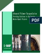 BASF - APE System.pdf