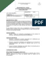Programa de curso actualizado.docx