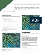 padlet-Grupo_358010_49.pdf