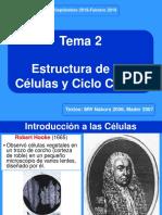 2 OV CelulasCicloCelular