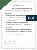 IDEAL JOBS.docx