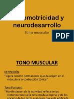 Tono-Muscular-1°-parte-