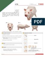 CNT-0010217-01.pdf