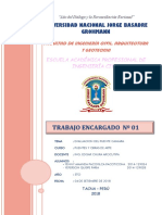 1er Informe. Puente Camiara
