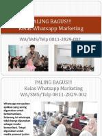 PALING BAGUS!!! Kelas Whatsapp Marketing, WA/SMS/Telp 0811-2829-002