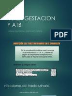 Expo Itu en Gestacion y Atb