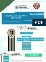 283539824-Deficiencia-de-DEFICIENCIA-DE-ADENOSINA-DESAMINASAAdenosina-Desaminasa.pptx