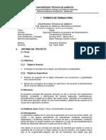 Proyecto Elipse Carmen Espin