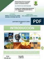 DISEÑO DE UN HORNO POR COMBUSTIÓN DEBIOMASA (CASCARILLA DE ARROZ) Y DELSECADOR PARA LA GRAMÍNEA