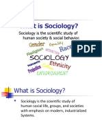 1 Sociology