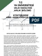 Asma_Ve_Germe_Struktur_Sistemi_Nedir.pptx