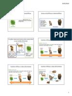 fluxos_energia_ciclos_materia1.pdf
