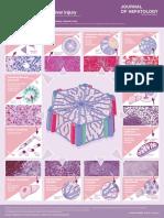 drug induced chronic liver injury.pdf