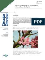 Circular_64_-_Apicultura_de_base_ecológica.pdf