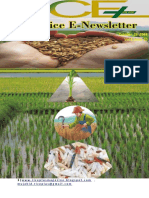 26th CTOBER ,2018 Daily Global Regional Local Rice E-Newlsetter
