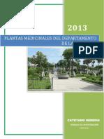 monografia-plantas-medicinales